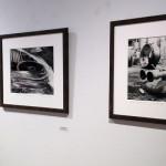 08-01-14-14-Lichtenstein-Center-for-the-Arts