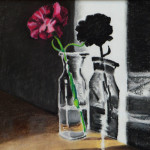 """Carnation in Light"", charcoal. (c)Mary Hannah Parkman."