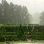 """The Mount Terrace Rain"", photograph. (c)Susan Geller."